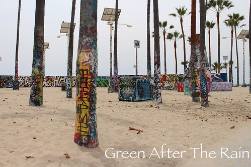160610f Venice Beach _17
