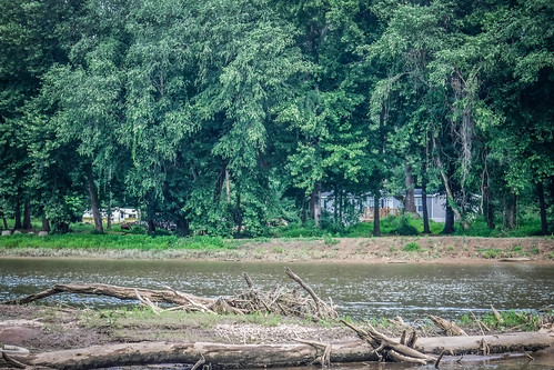 Goat Island in the Broad River-78