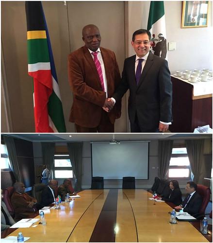 El Embajador de México en Sudáfrica se reúne con el Ministro de Agricultura, Recursos Forestales y Pesca