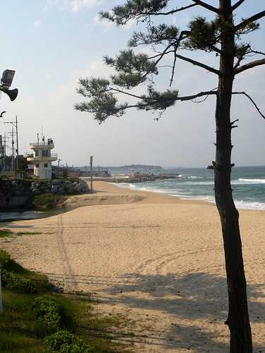 c16-Gangneung-Plage (8)