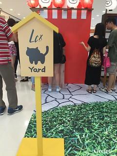 CIRCLEG 香港 遊記 尖沙咀 海港城  LCX NEKO ATSUME 悠遊夏祭 JAPANESE SUMMER FESTIVAL 貓 IPHONE GAME APP (4)