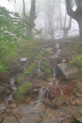 Parque natural de #Gorbeia #Orozko #DePaseoConLarri #Flickr -087