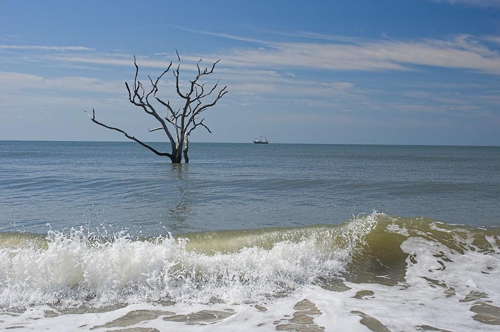 High tide in Botany Bay (2)