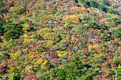 Huanshan Mountain China