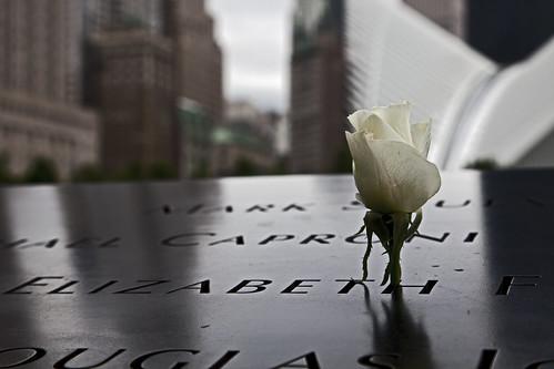 rose - WTC site 2016