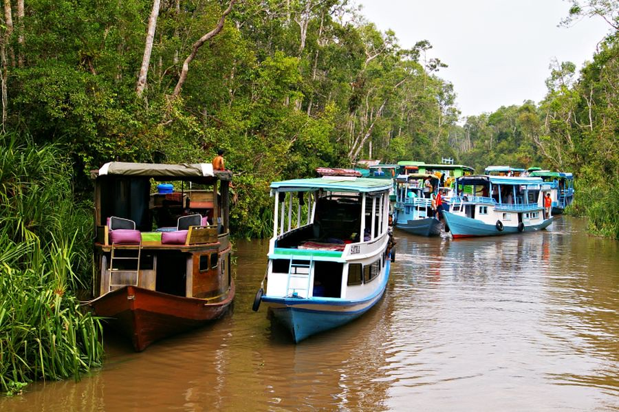 klothok-boat-Borneo