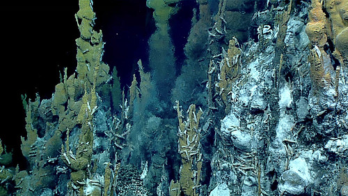 Hydrothermal Vent Chimeny