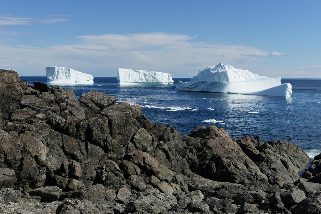 Iceberg - St. Anthony Newfoundland