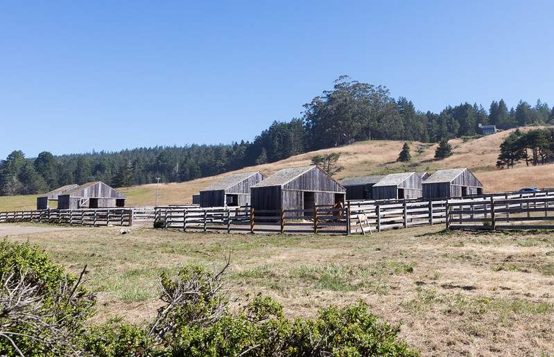 sea ranch 37