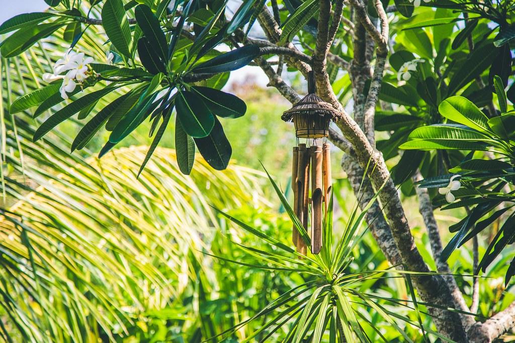 Billeddagbog Bali-1-17