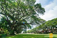 Silliman University Dumaguete