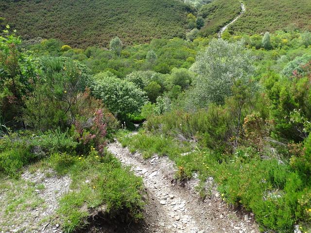 Sendero en el PR-G 184 Ruta da Lagoa de Lucenza