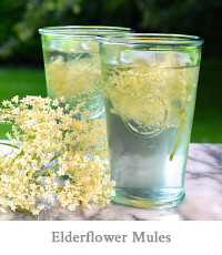 Elderflower Mules