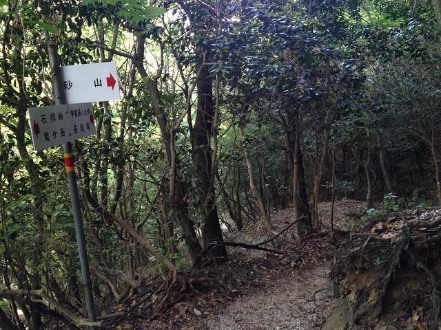 竜ヶ岳 砂山分岐