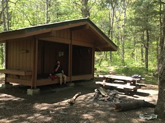 Whitley Gap Shelter