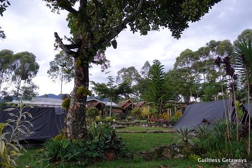 camping-dahilayan.jpg