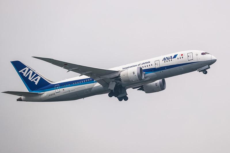 JA825A 全日空 ANA Boeing 787-8 Dreamliner