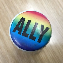 Gay Pride Ally Button