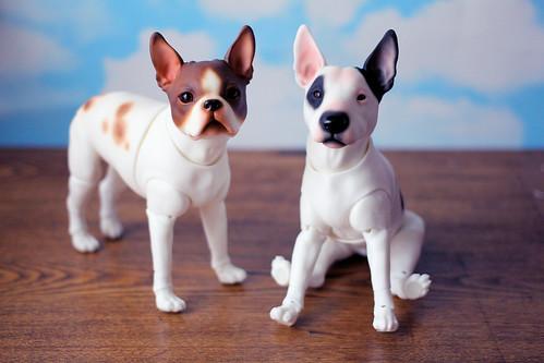 Winnie & Bodger