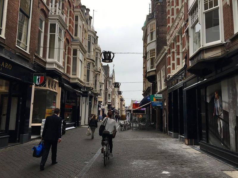 The Hague15