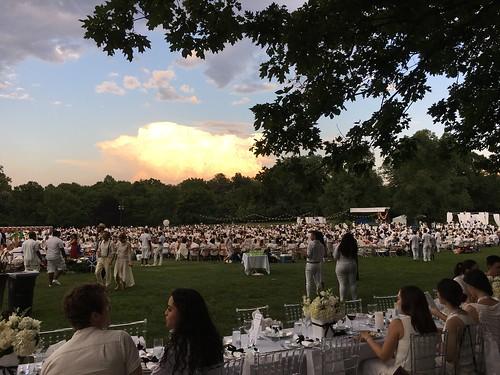Dinner in White 2016 in Prospect Park (8)