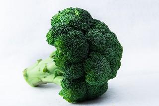チワワが食べられる野菜 ブロッコリー
