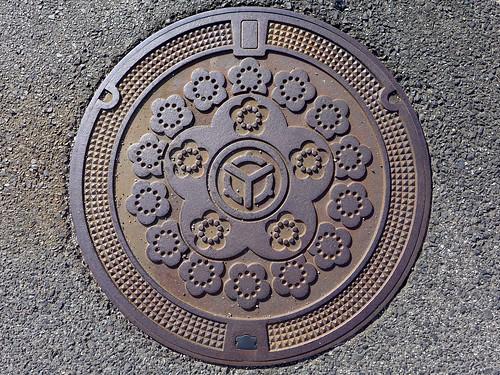 Mitoya Shimane, manhole cover (島根県三刀屋町のマンホール)