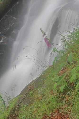 Parque natural de #Gorbeia #Orozko #DePaseoConLarri #Flickr -120