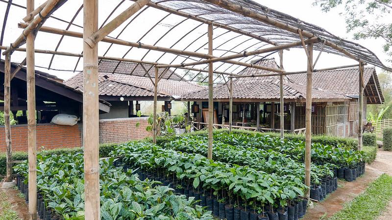 27851121750 cf09d3d21a c - REVIEW - Mesastila Resort, Central Java (Arum Villa)