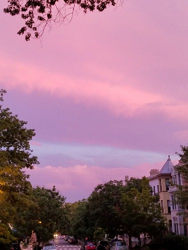 Pink Sky at Night