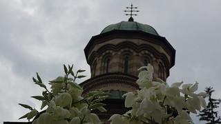 Kloster Cozia