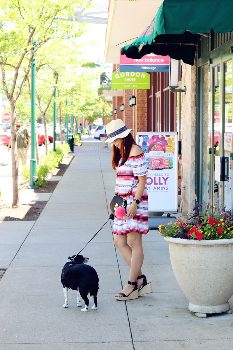 stripe-dress-summer-outfit-beagle-dog-6