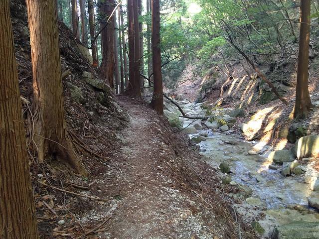 竜ヶ岳 宇賀渓 登山道