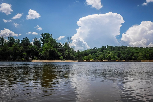 Goat Island in the Broad River-128