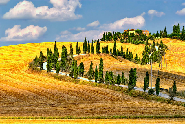 Summer landscape in Tuscany at summer