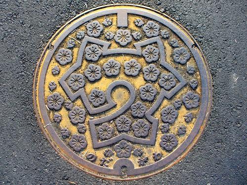Nodagawa Kyoto, manhole cover (京都府野田川町のマンホール)