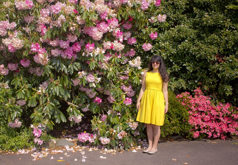 girl in yellow, yellow dress, girl holding yellow leaf, yellow leaf, rhodedendron, glasgow botanical garden, yellow fifites dress, pink flowers, pink and white flowers, floral, garden, flowers, flower, glasgow