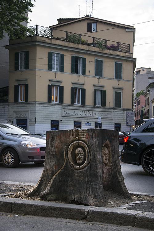 Albero Trastevere