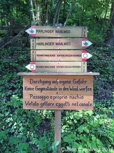2016 05 Marlinger Waalweg 7