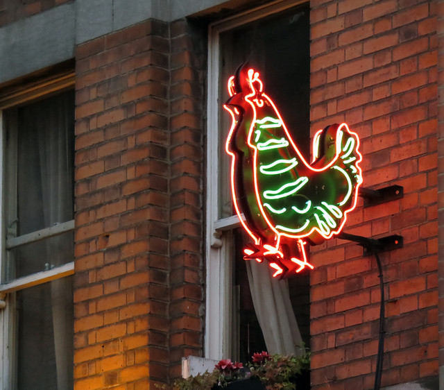 Neon chicken on a Dublin bar