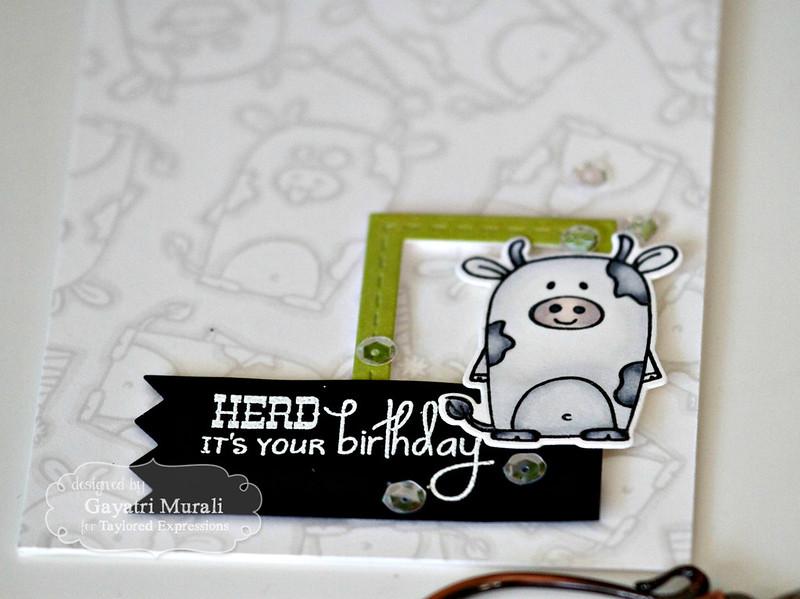 Herd It's Your Birthday closeup by Gayatri Murali