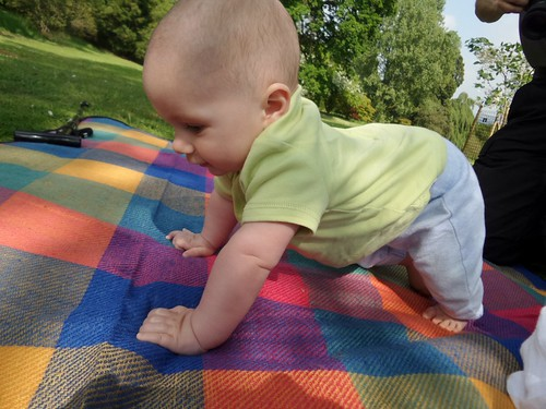 a baby crawling on a colourful picnic blanket