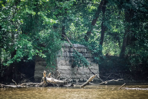 Goat Island in the Broad River-100