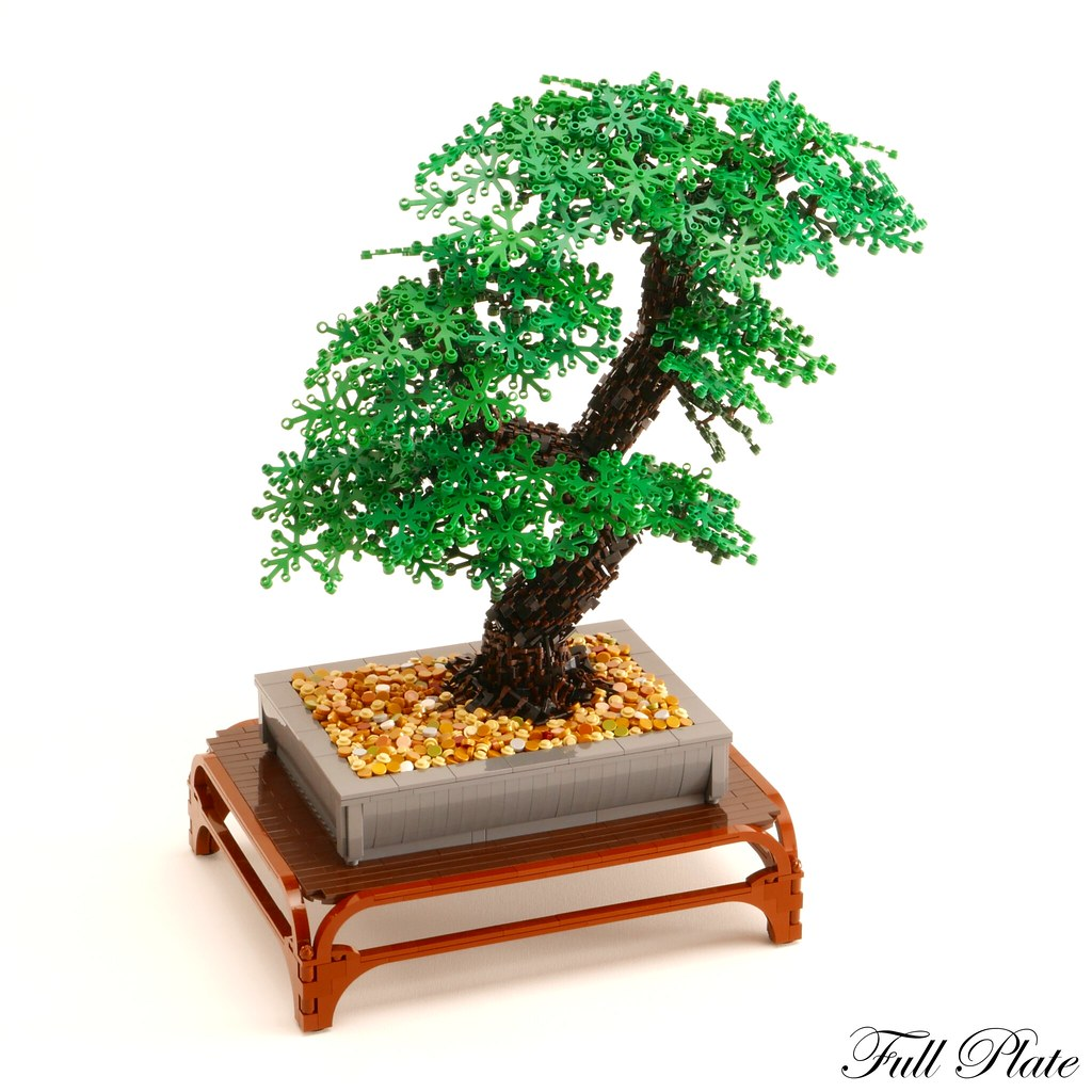 Bonsai (3 of 3)