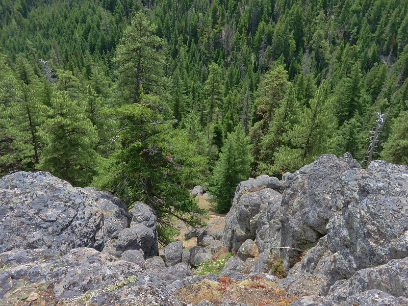 Looking down into the Fifteenmile Creek Valley