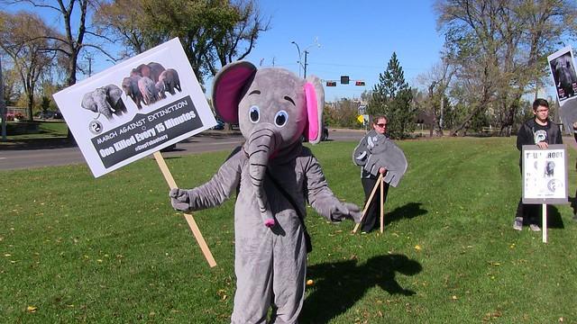 Global March for Elephants and Rhinos - Edmonton