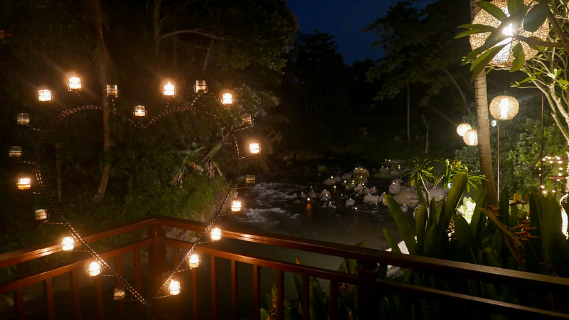 27954125110 baabd28560 c - The definitive guide to Food, Culture and Nature in Ubud, Bali (October 2015)