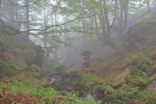 Parque natural de #Gorbeia #Orozko #DePaseoConLarri #Flickr -068