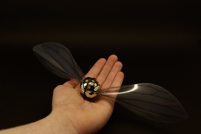 The Snitch - Harry Potter