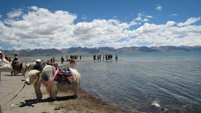 Namtso Lake 46